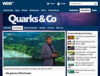 Quarks & Co. - Aktuelles - Irina Scholz - Sprecherin